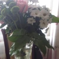 """Что за цветы """"зеленые шарики"""" в букете?"""