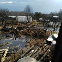 Что делать после потопа?