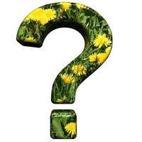 Правильно ли замульчирован огород соломой?