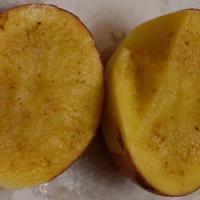 Чем болен картофель?