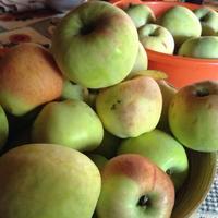 Поделитесь рецептом приготовления яблочного уксуса