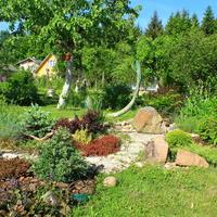Рокарий – сердце моего сада