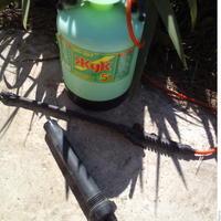 Огородные лайфхаки для обработки сада: как обойтись без опрыскивателя