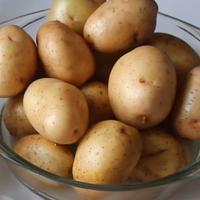 Три классных рецепта избавления от кашля и насморка