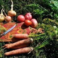 Классные помидорки с морковью и луком на зиму!