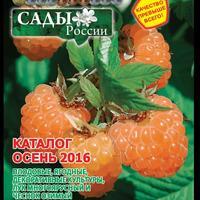Новый каталог Осень-2016 уже на сайте !