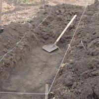 Домашнее задание №5: удобрения и плодородие