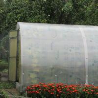 Теплицы садоводов нашего СНТ
