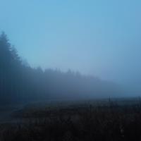 Встреча с туманом