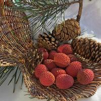 Тропический фрукт личи - в омолаживающих масках