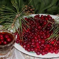 Клюква – ягода-лекарь