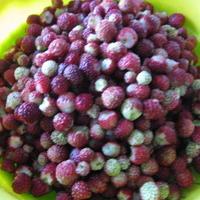 Вкусняшка из луговой ягоды