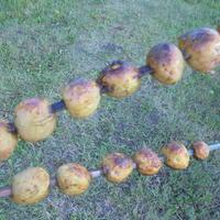 Картошечка на шампурах - готовится 10 минут