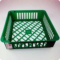 Корзины для посадки луковичных - отличная защита от грызунов!