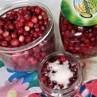 Северная клюква - витаминный подарок осени