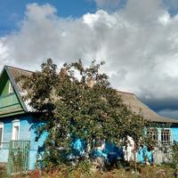 Домик окнами в сад, где живёт моя Валя