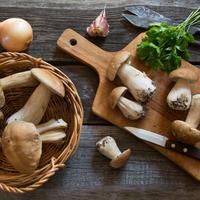 Рецепты заготовки грибов на зиму
