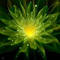 Светящиеся растения: экономия на освещении улиц и стильный ландшафтный дизайн