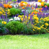 8 модных садовых тенденций 2018 года