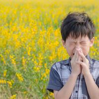 Когда цветы не радуют: поллиноз, или аллергия на пыльцу