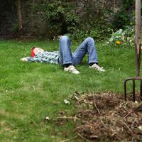 Как упростить уход за садом и огородом. Инструкция для дачного «лентяя»