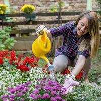Эко-ориентированное городское садоводство: что мы можем сделать для природы в городе