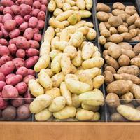 Можно ли сажать картофель из магазина?