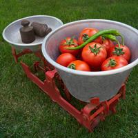 Овощная экономика. Что дешевле: посадить или купить?