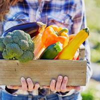Может ли дача приносить доход? Овощная экономика в действии
