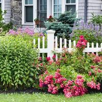 Красивые цветники в палисаднике: подбираем растения для четырех сторон света