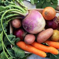 Овощной салат с репой на зиму (видео)