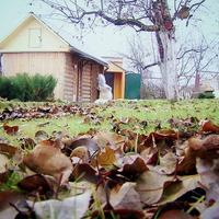 Блиц-утепление дачного домика (видео)