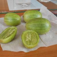 Что это за овощ?