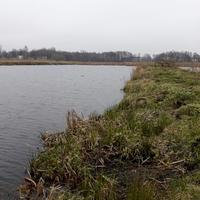 Зимний пейзаж в Калининградской области