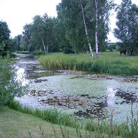 Русские водные сады