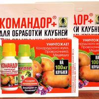 """А колорадских-то нет! Тестирование препарата """"Командор+ для обработки клубней картофеля"""""""