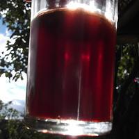 Правила виноделов: домашнее вино из ирги. Этап второй