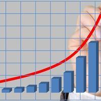 Ответ на мировой экономический кризис: сам себе РАО ЕЭС