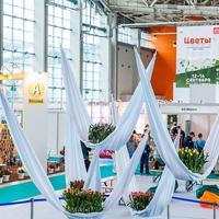 Итоги одного из главных событий «зеленой» отрасли:  международная выставка «ЦВЕТЫ-2018»