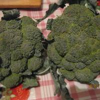 Как правильно хранить брокколи?