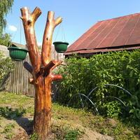 Как обыграть спиленное дерево: превращение анчара в Фемиду