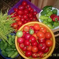 Кладезь витаминчиков на зиму)))))