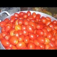 Посеяла томаты на рассаду. Истории