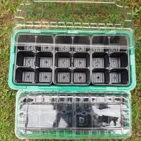 Мой секретик выращивания рассады огурцов и кабачков
