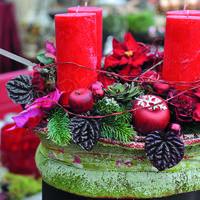 В ожидании чудес: украшаем сад к Новому году и Рождеству