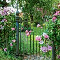 Калитки — врата в царство зелени
