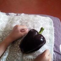 Домашнее задание №9: как я выращиваю рассаду перцев и баклажанов