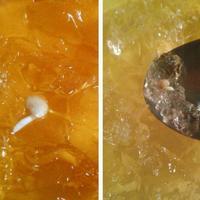 Домашнее задание №9: как я выращиваю рассаду перцев и баклажан
