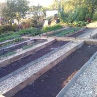 Как организован огород на нашем дачном участке