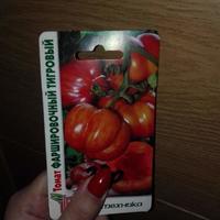Поделитесь отзывами о сорте томата Фаршировочный тигровый